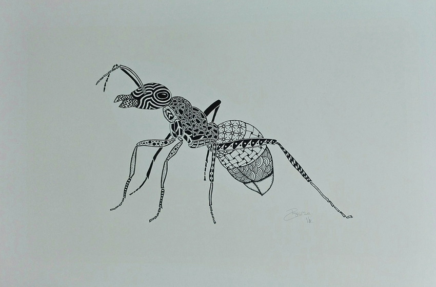 Screen print - Ant
